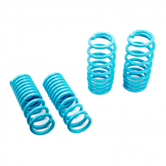 Traction-S™ Performance Lowering Springs For Dodge Charger R/T RWD 2011-19 (No Magneride)