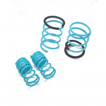 Acura RSX (DC5) 2005-2006 Traction-S™ Performance Lowering Springs